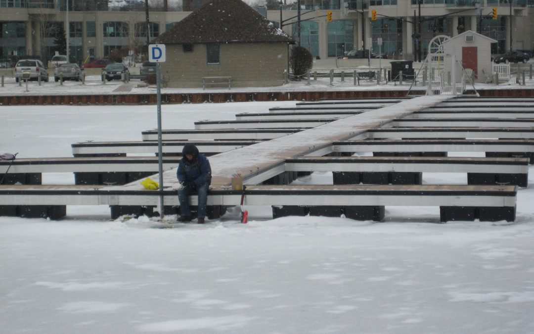 Do You Hate Having to Remove Your Dock in Winter?